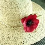 Silk Anemone Red Hat